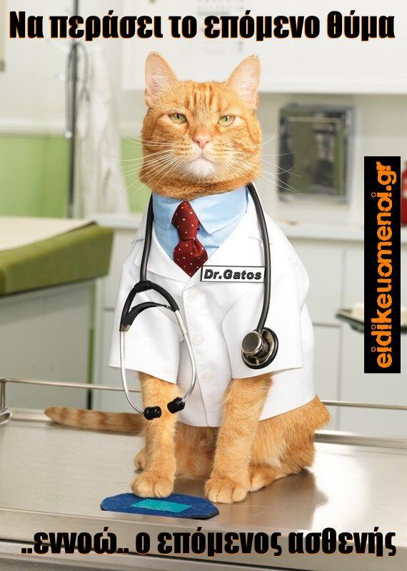 Γάτα γάτος ντυμένος Ιατρός με γραβάτα. Να περάσει το επόμενο θύμα .. εννοώ ο επόμενος ασθενής. Ειδικευόμενοι Ειδικευόμενος Ειδικευόμενη