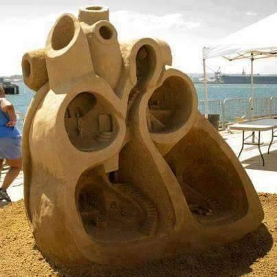Καρδιά γλυπτό από άμμο, ανατομικό