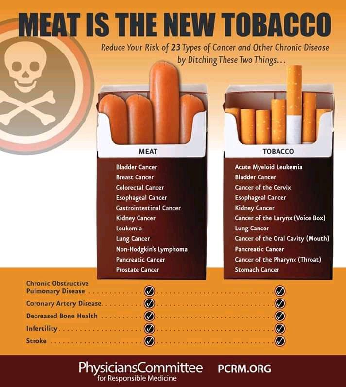 Meat is the new tobacco - risk of cancer and chronic disease. Κίνδυνος για καρκίνο και άλλες χρόνιες παθήσεις - ίδιο με κάπνισμα
